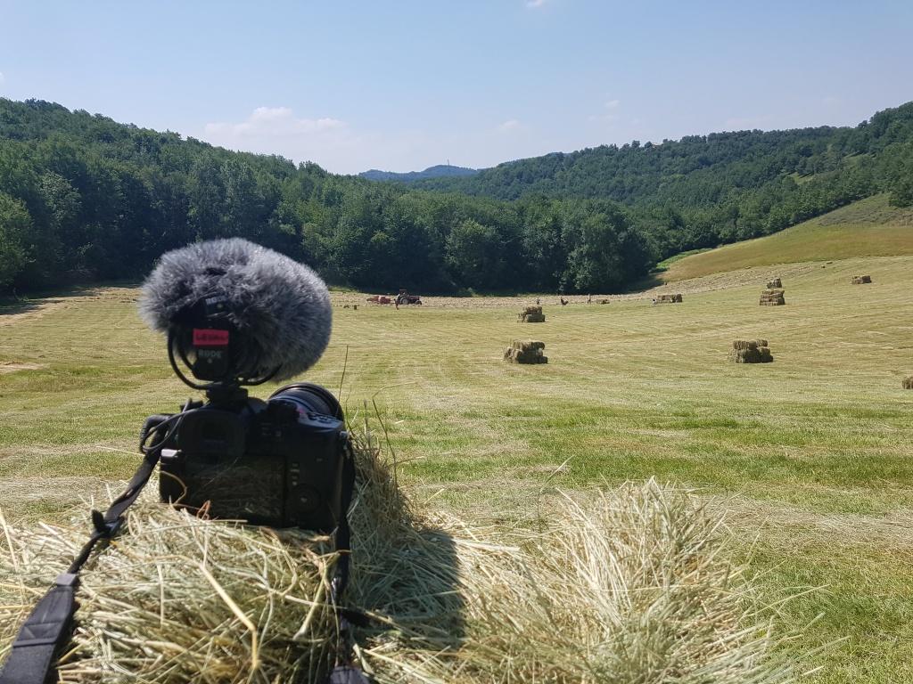 Levan's photo on Léo's farm.